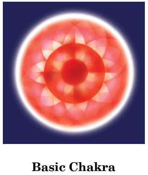 Basic Chakra
